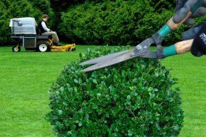entretien de jardin entreprise Bouaye